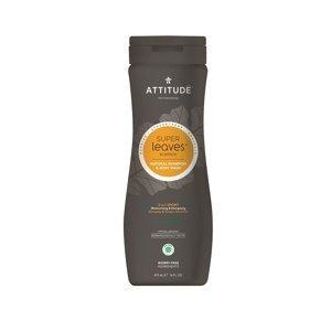 Attitude - Přírodní pánský šampón & tělové mýdlo 2 v 1 s detoxikačním účinkem - normální vlasy, 473 ml