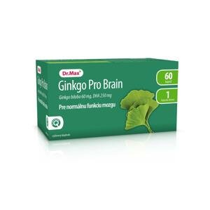 Dr.Max Ginkgo Pro Brain 60 cps