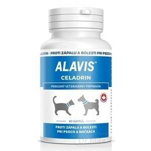 Alavis Celadrin 60tbl
