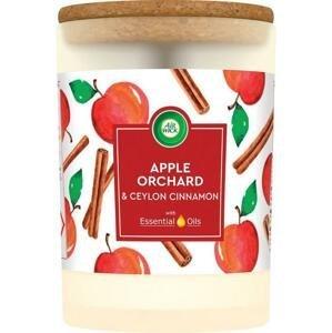 Air Wick Essential Oils Sviečka jablkový sad & cejlónska škorica 1×185 g, vonná sviečka