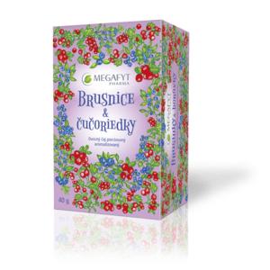 MEGAFYT Brusnice & čučoriedky 20 x 2 g