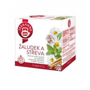TEEKANNE Bylinný čaj žalúdok a črevá 10 x 2 g