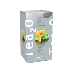BIOGENA Tea2o marhuľa a nopál 20 x 2,5 g