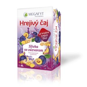 MEGAFYT Hrejivý čaj slivka so zázvorom 20 x 2,5 g