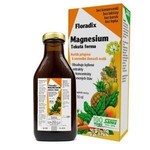 Salus Floradix Magnesium tekutá forma 250 ml