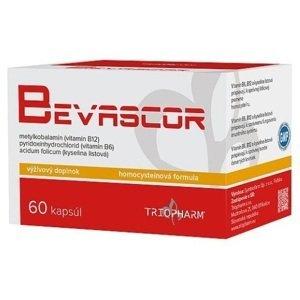 Bevascor 60 cps