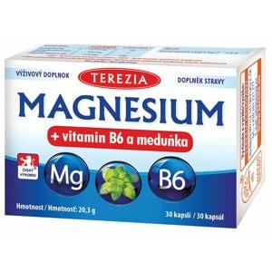 Terezia Magnesium + vitamin B6 a meduňka 30ks
