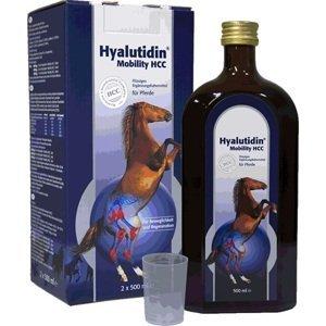 Hyalutidin HCC Mobility 2x500ml
