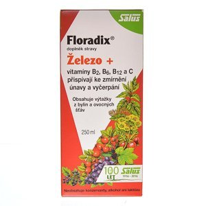 SALUS Floradix bylinný sirup 250 ml