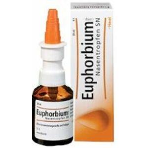 Euphorbium compositum-Heel S nosová aerodisperzia aer nas 20ml