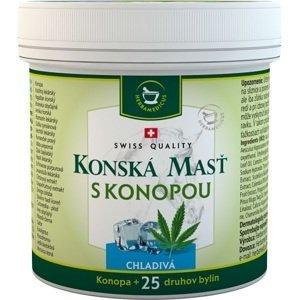 Herbamedicus Konská masť s konopou chladivá 250ml