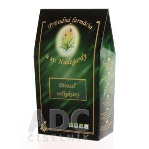 Prír. farmácia DIVOZEL VEĽKOKVETÝ kvet bylinný čaj 30 g