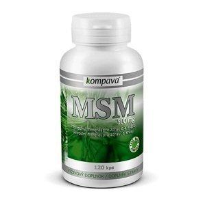 kompava MSM 500 mg 120 cps