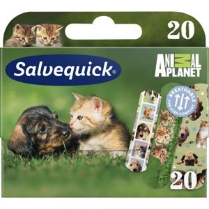 Salvequick Animal Planet Náplasť so zvieratkami pre deti, 20 ks