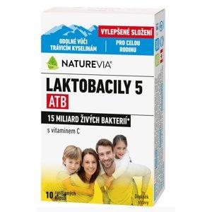 "Swiss NatureVia LAKTOBACILY ""5"" ATB Imunita s vitamínom C 10 kapsúl"