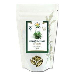 Salvia Paradise Kotvičník zemný - Tribulus plod 80g