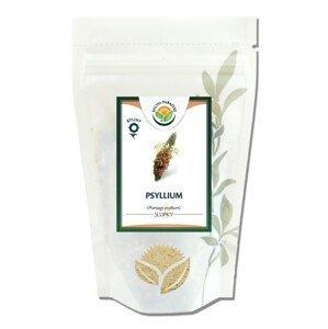 Salvia Paradise Psyllium 200g