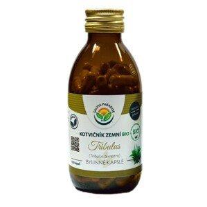 Salvia Paradise Kotvičník zemný - Tribulus BIO 120 kapsúl
