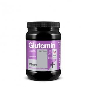 Kompava Glutamín 500 g
